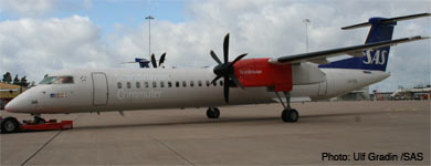SAS grounds planes again after incident