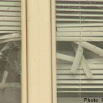 Shots fired at prosecutor's home