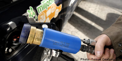 Green-car subsidy to get fresh injection