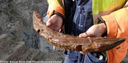 Swedish archaeologists find Iron Age wooden artifacts