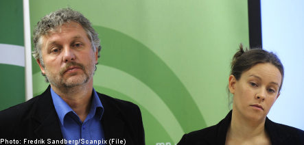 Green party leaders to resign after election