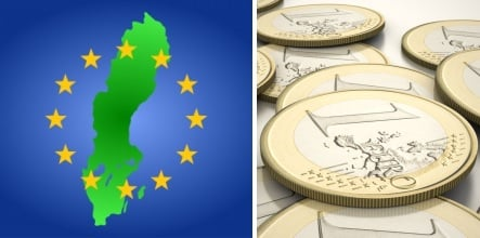 Most Swedes favour new vote on the euro