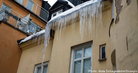 Icicle gunned down in eastern Sweden