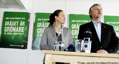 Green Party lays out election platform