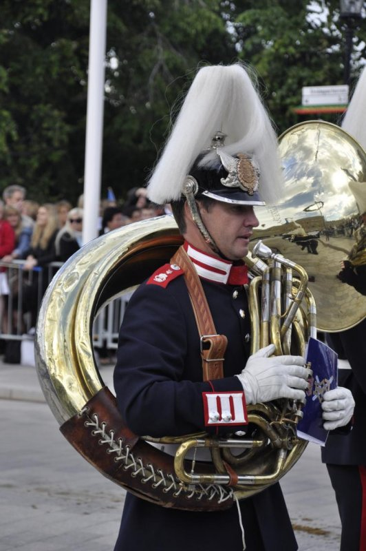 Royal Cortège<br>This sousaphonist guards his instrument closely to his chestPhoto: Anastasia Pirvu