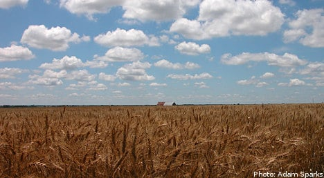 Experts: global weather threatens food security