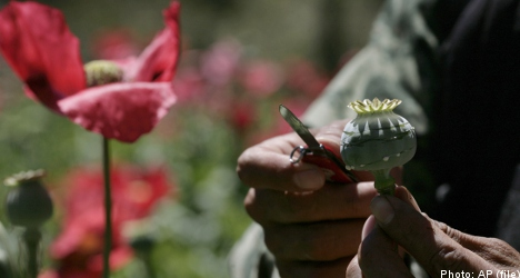 Swedish man gets 10 years in jail for opium