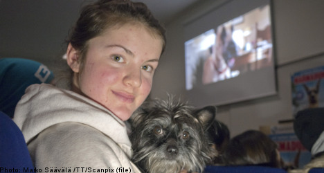 Sweden opens first-ever cinema for dogs