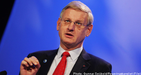 'Turkey and the EU need each other': Bildt