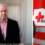 Red Cross chief loses fraud appeal