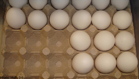 Man fined after returning fire at egg-throwing pranksters
