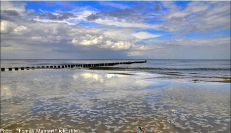 Sweden failing to protect Baltic Sea: WWF