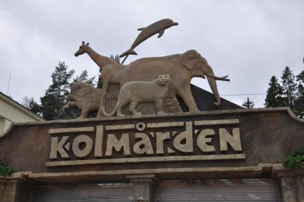 Kolmården<br>The largest wildlife park in Scandinavia, which offers 750 wild attractions from all the jungles, savannahs and oceans of the world.  Photo: Zoostar/Flickr (file)