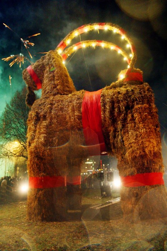Gävle Christmas Goat<br>No one knows what happened to the Christmas goats of 1975 and 1977.Photo: Pernilla Wahlman/Scanpix(File)
