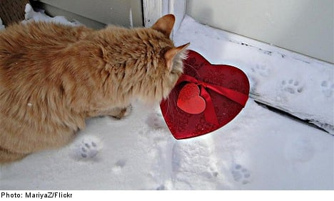 Top ten reasons to love (or hate) Valentine's Day in Sweden