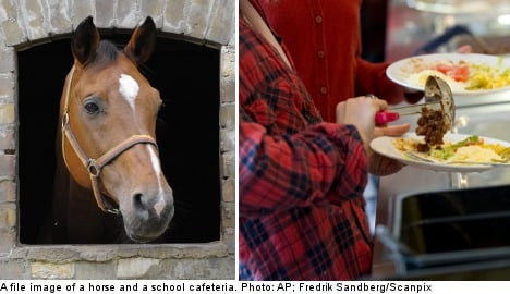 More Swedish retailers hit by horsemeat scandal