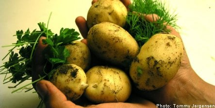 'Too many potatoes on Swedes' plates': expert