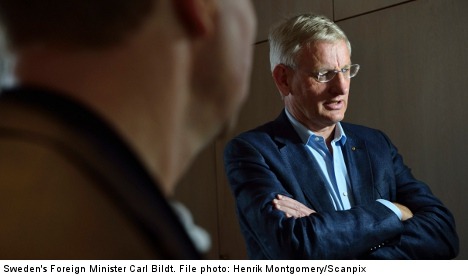 Bildt in Twitter row over Egyptian violence