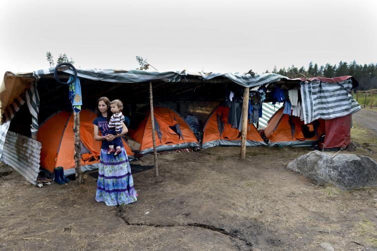 Families in the forest<br>While most berrypickers are men, Bulgarian Natalia Kostova, 24, took her then eleven-month old son Tosko with her to Mehedeby last year Photo: Pontus Lundahl/Scanpix