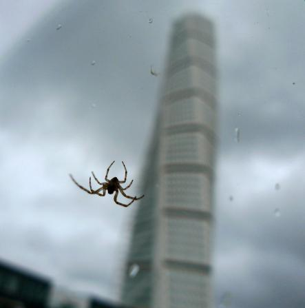 A gigantic spider visits the Turning Torso... from afarPhoto: Johan Nilsson/Scanpix