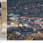 Swedish city hit by parasite outbreak