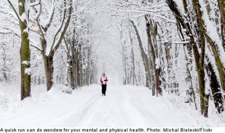 """<font size=""""5"""">Eight tips for surviving winter</font><br>With days shortening and winter just around the corner, Stockholm nutritionist Kate Nordin offered The Local eight top tips to get through the winter. <br> <a href=""""http://www.thelocal.se/50556/20131002/"""" target=""""_blank""""> Click here to gear up for winter.</a>"""