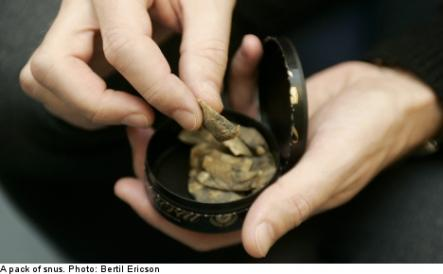 """2: """"You snus too much""""<br>A quick explanation of snus in case you're unaware. Snus is a moist snuff packet (imagine a tobacco teabag the size of a piece of chewing gum) that you wedge between your lip and teeth. Well, <i>you</i> probably don't, but Swedes do. A lot. If you think a snus packet sounds familiar, it's probably because you've seen one dangling from a Swede's upper lip mid-conversation or perhaps you've seen a used one in the gutter or in the toilet, spat out and forgotten. Equally re"""