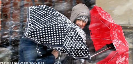 Autumn over as winter snow sweeps Sweden