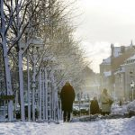 """<b>Winter is coming:</b>  De Leeuw-van Wijk says it's important to explain to newcomers that there are two types of Swedes: The Summer Swede and the Winter Swede.  """"People who come here toward the end of the year feel there is no possibility for connecting with people,"""" she says about the natives' propensity to go underground in November and not emerge until spring.Photo: Henrik Montgomery/TT"""