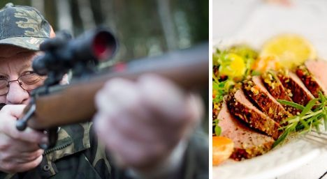 Lean, tasty and too many – time to eat wild boar?