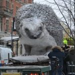 The man behind the biggest (and coolest) hedgehog in Sweden