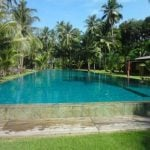 """Koh Chang (cont'd). Angry budless birches versus the cooling shade of a palm tree. You decide. <b><a href=""""http://www.holidaylettings.co.uk/rentals/koh-chang/1296461?utm_source=The+Local+Sweden&amp;utm_medium=CPA&amp;utm_campaign=Search+now+button"""" _blank""""="""""""">Find out more here</a>.</b>Photo: Holiday Lettings"""