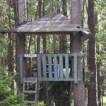 """For the kids, what could be more fun than this treehouse, situated in the cottage grounds. The cottage sleeps six.  <b><a href=""""http://www.holidaylettings.co.uk/rentals/stockholm/353822?utm_source=The+Local+Sweden&amp;utm_medium=CPA&amp;utm_campaign=Search+now+button"""" target=""""_blank"""">Book here</a></b>"""