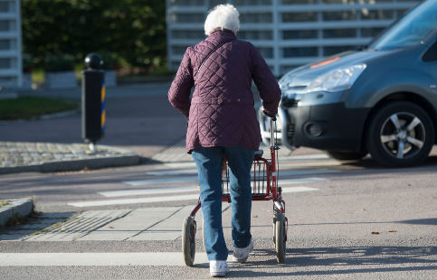 Swedish pensioner wins fight for walkabout rights