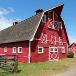 9. Barn. <br><br>  Ever seen one of those road signs in Swedish that say