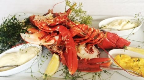 How to catch the first lobster of the year: blog