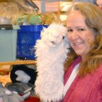 US woman starts up Swedish toy store online
