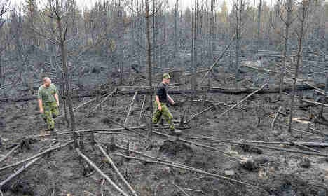 Forest fire zone becomes 'tourist hit' for Sweden
