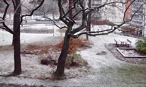 Traffic warnings as first snow hits Stockholm