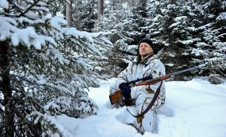 Swedish court allows controversial wolf hunt