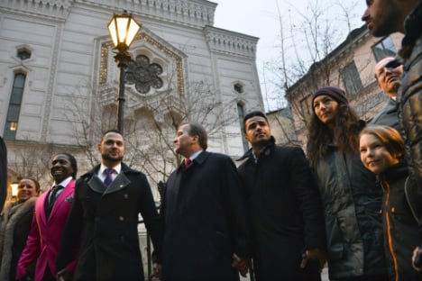 IN PICTURES: Swedes in 'ring of peace' protest