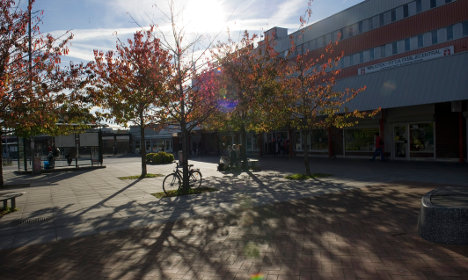 'Segregation in Sweden will continue to rise'