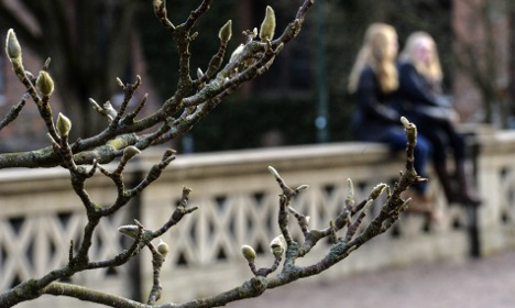 Sweden in for 'warmer than usual' spring