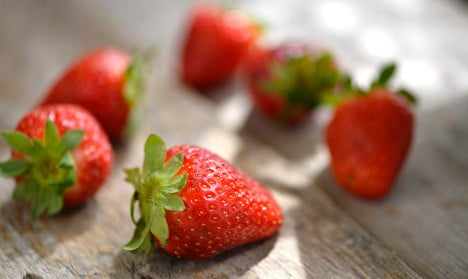 First Swedish spring strawberries at auction