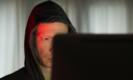 Scandis-only paedophile website uncovered
