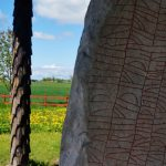 Rökstenen is regarded as the first piece of Swedish literature, and the longest rune inscription in the world.Photo: Solveig Rundquist/The Local