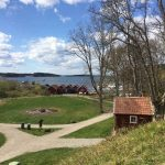The Stockholm archipelago looks stunning in the sunshine. This photo was taken on Grinda.Photo: Maddy Savage