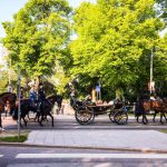 Queen Silvia rides through Stockholm in a carriage during the National Day celebrations. Photo: Natalia Borisenko