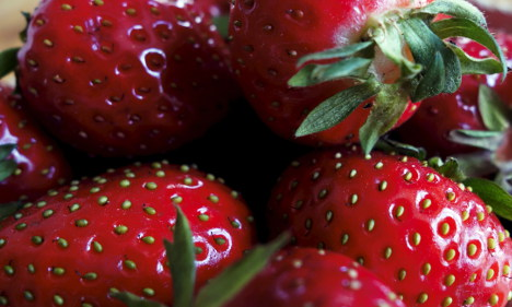 Fears over fake 'Swedish' strawberry sales