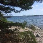 Gålö island just outside Stockholm on 5th July.Photo: Maddy Savage/The Local